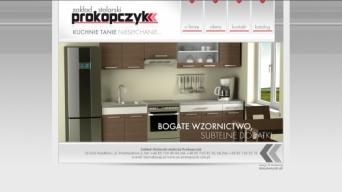 Strona internetowa Z.S. Prokopczyk